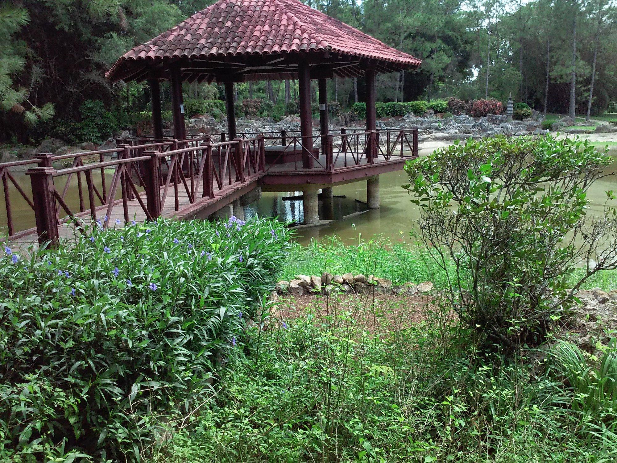 Jardin botanico nacional havana cuba top tips before for Jardin 81