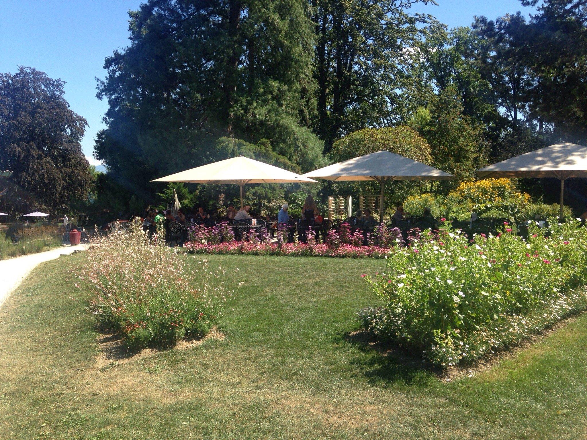 Cafeteria du jardin botanique gen ve restaurant avis for Jardin botanique geneve