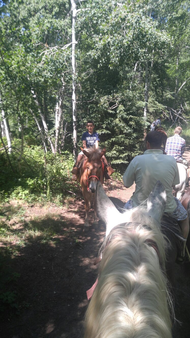 Andy's Trail Rides