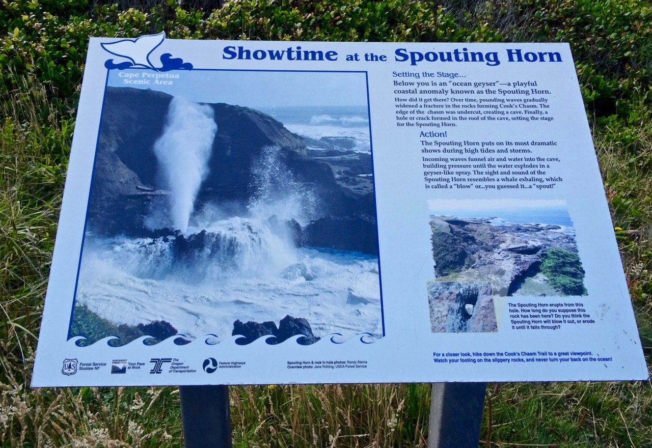 Cook's Chasm, Sign Showing Forces Creating the Spouting Horn