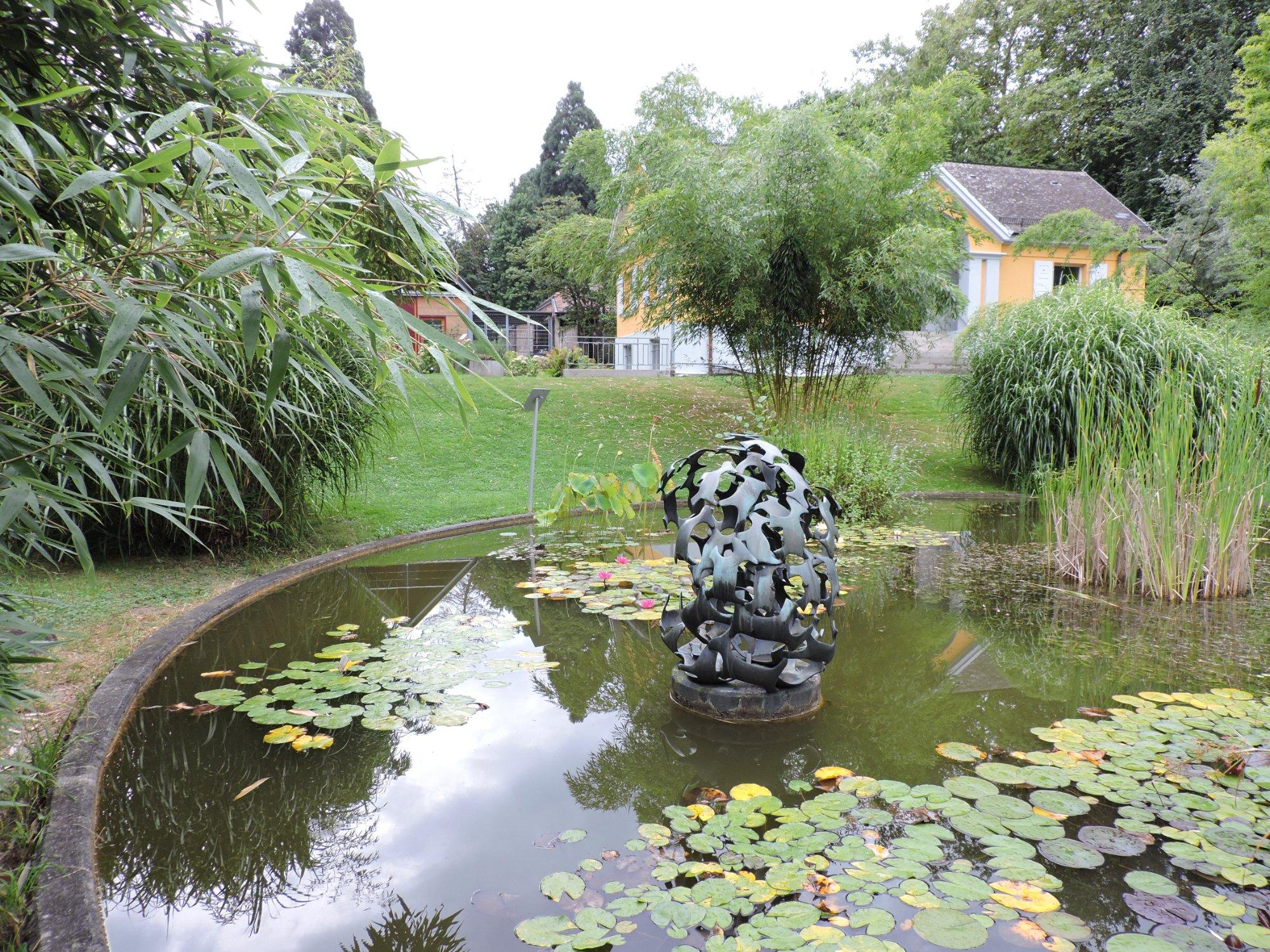 Jardin botanico de friburgo freiburg im breisgau for Botanico jardin