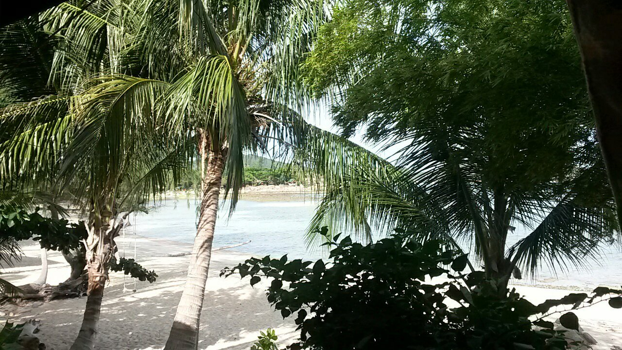 Coconut Beach Bungalows