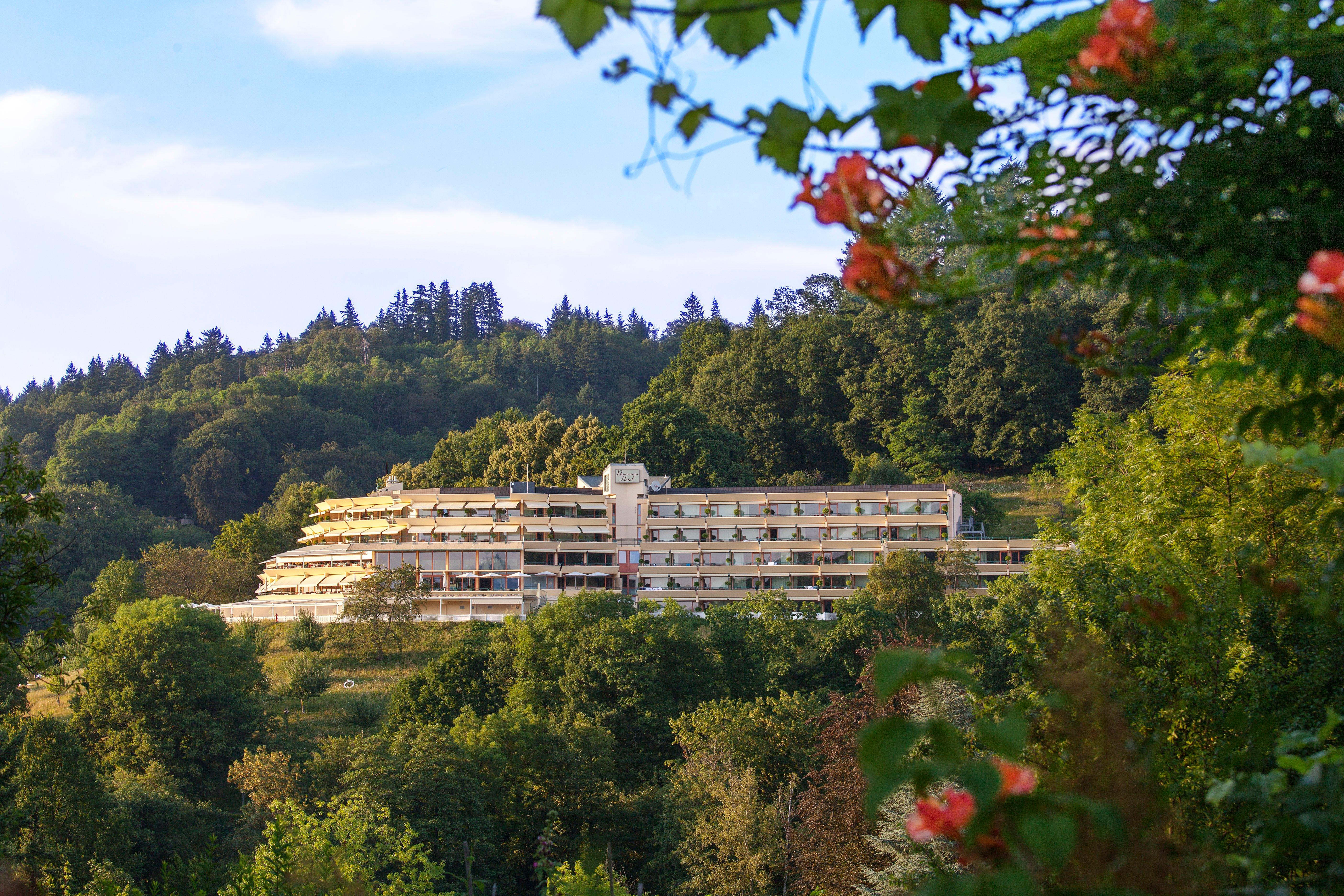 弗萊堡美居全景酒店