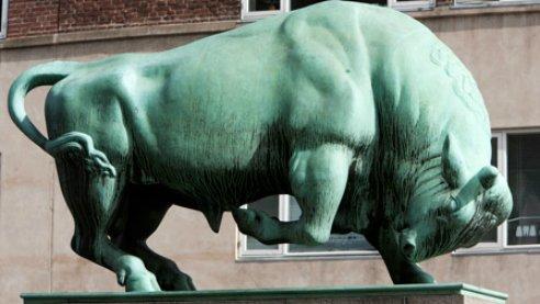 The Cimbria Bull