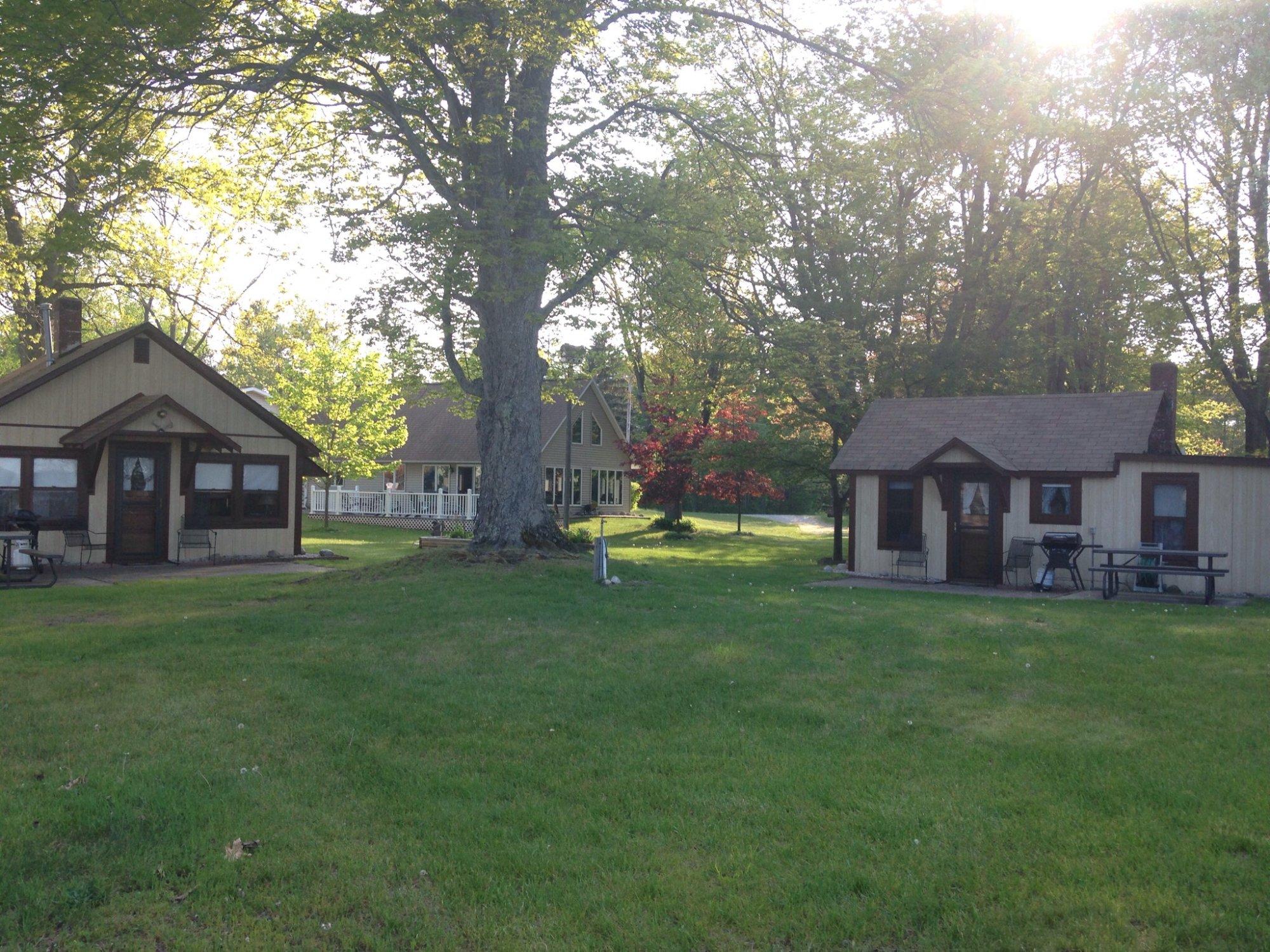 Honey Bear Cabins