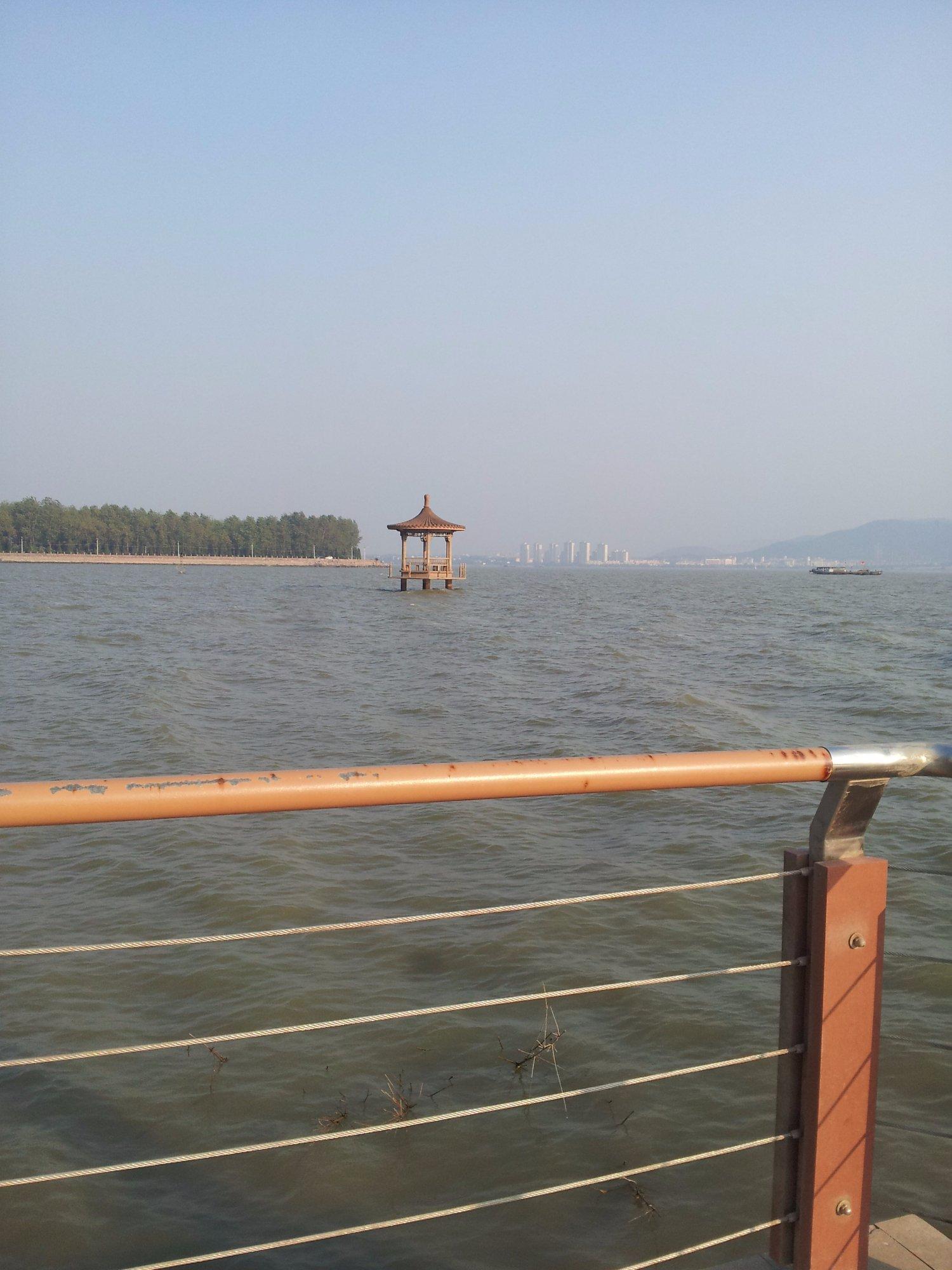 湖畔からの眺め