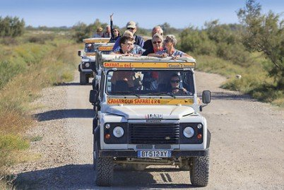 Camargue Alpilles Safaris