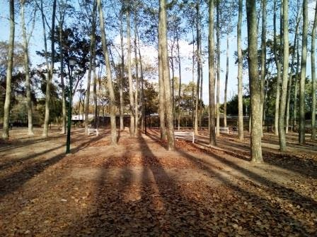 Parc Prudenci Bertrana