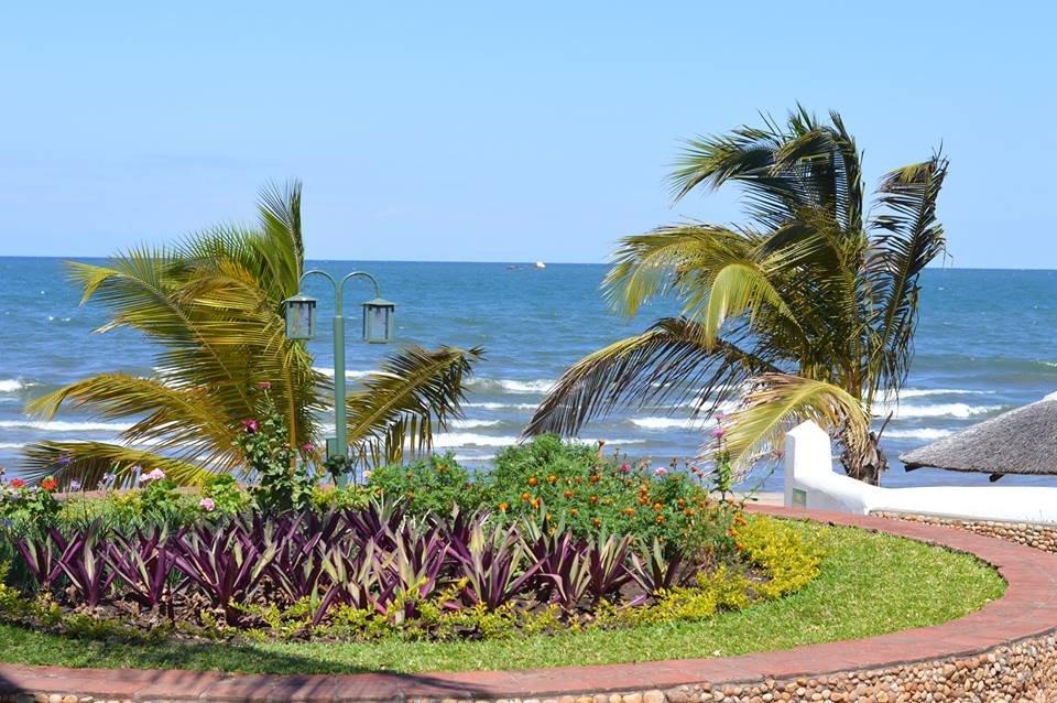 太陽鳥利文斯敦尼亞海灘飯店
