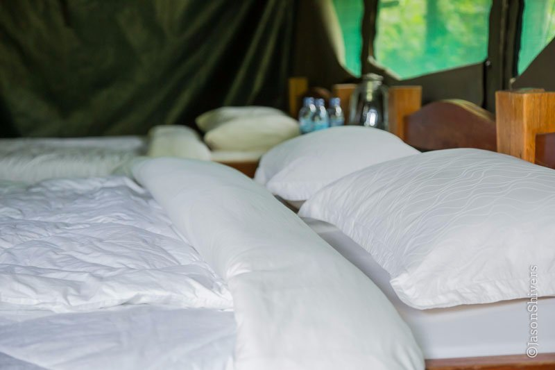 Karatu Forest Tented Camp
