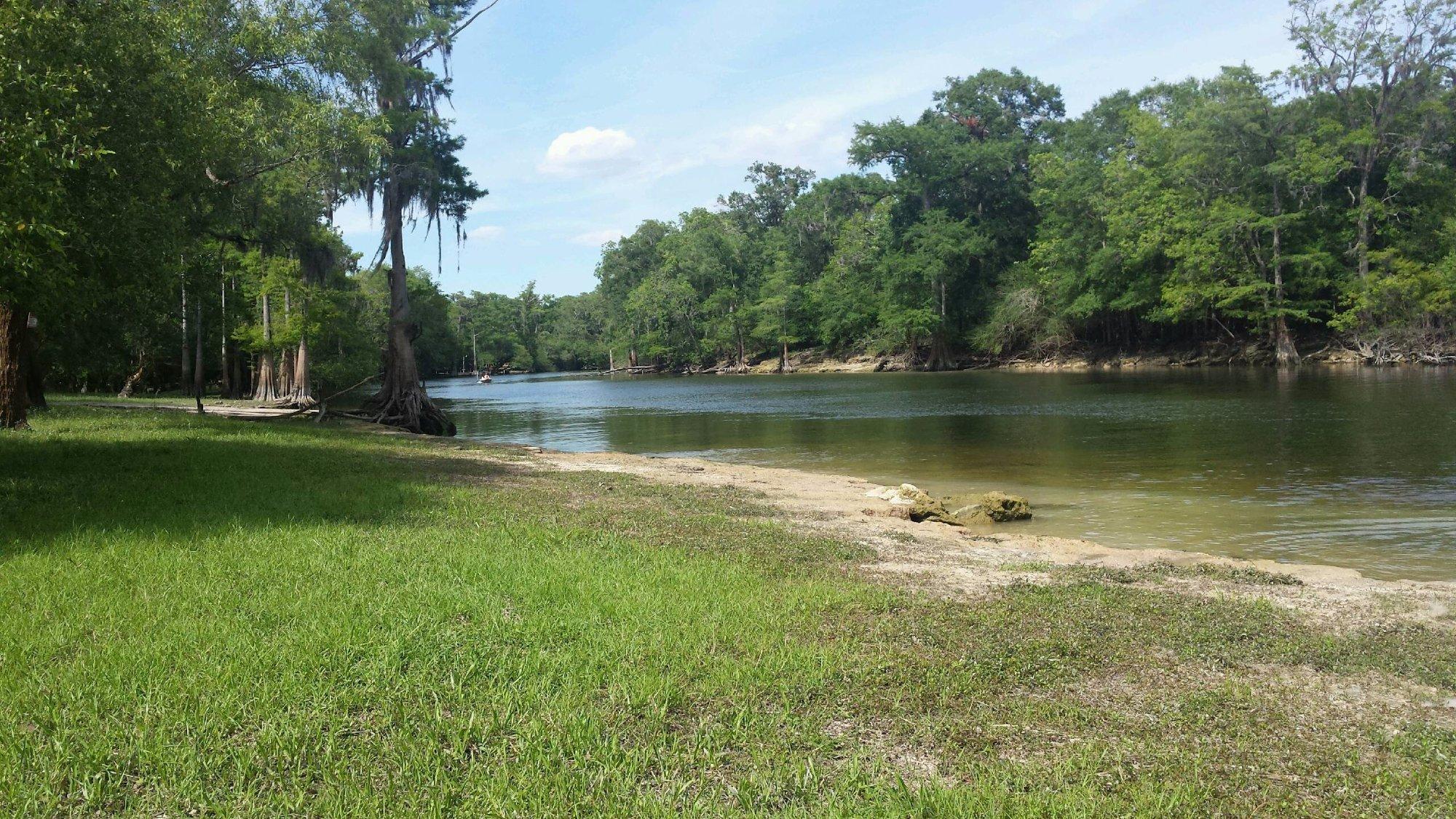 Santa Fe River, Suwanee county Florida