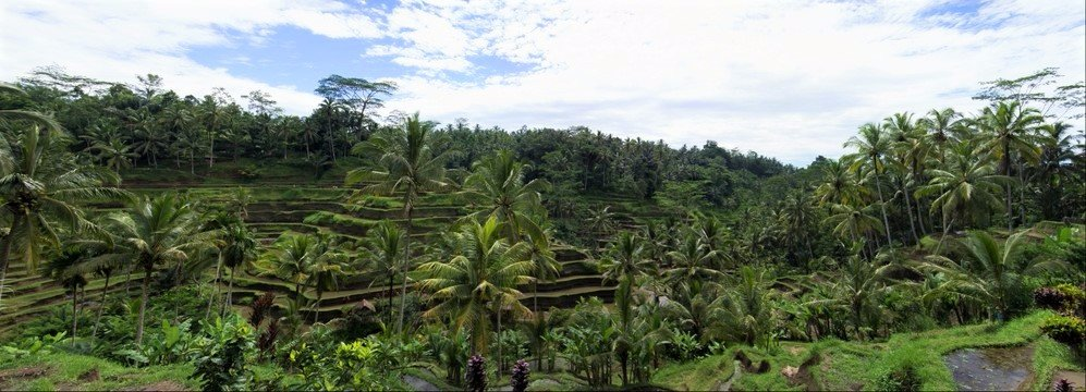 Bali Wonderful Tours