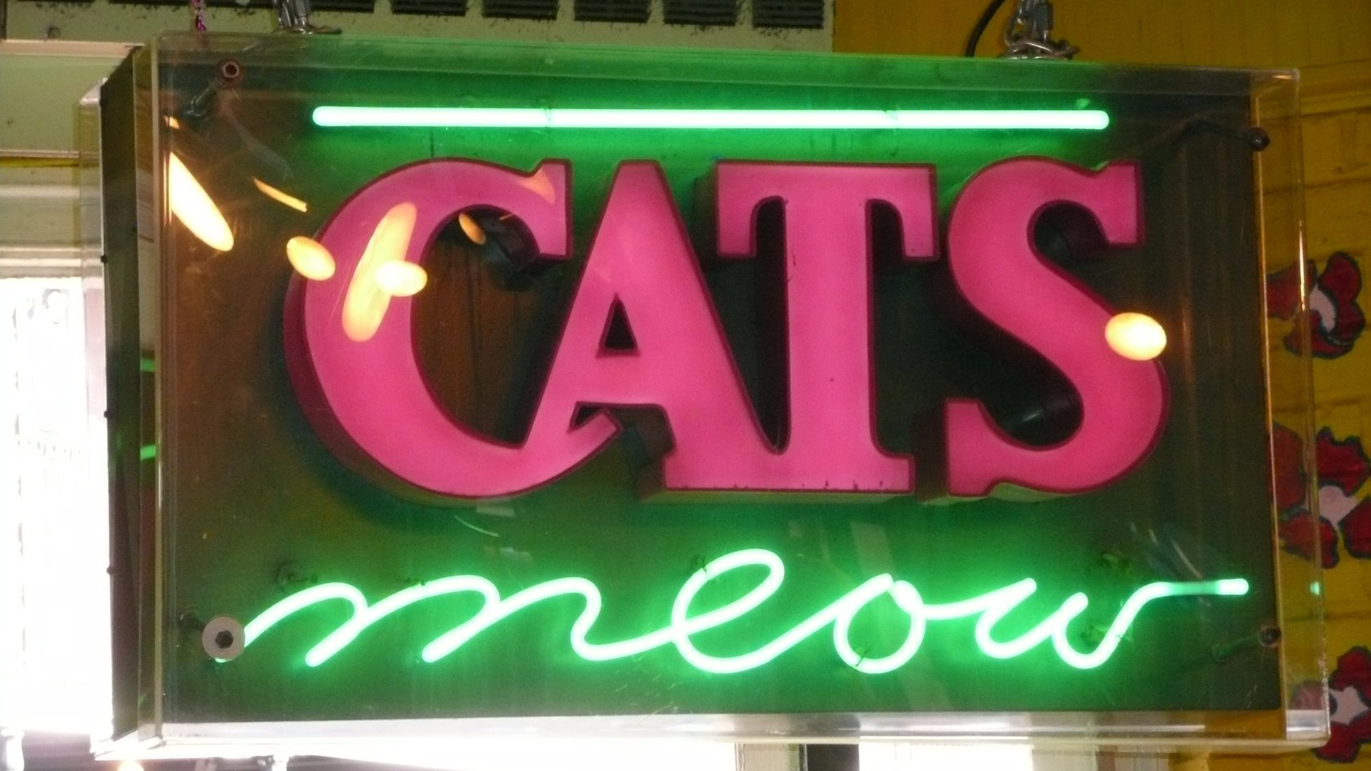 Cat's Meow on Bourbon
