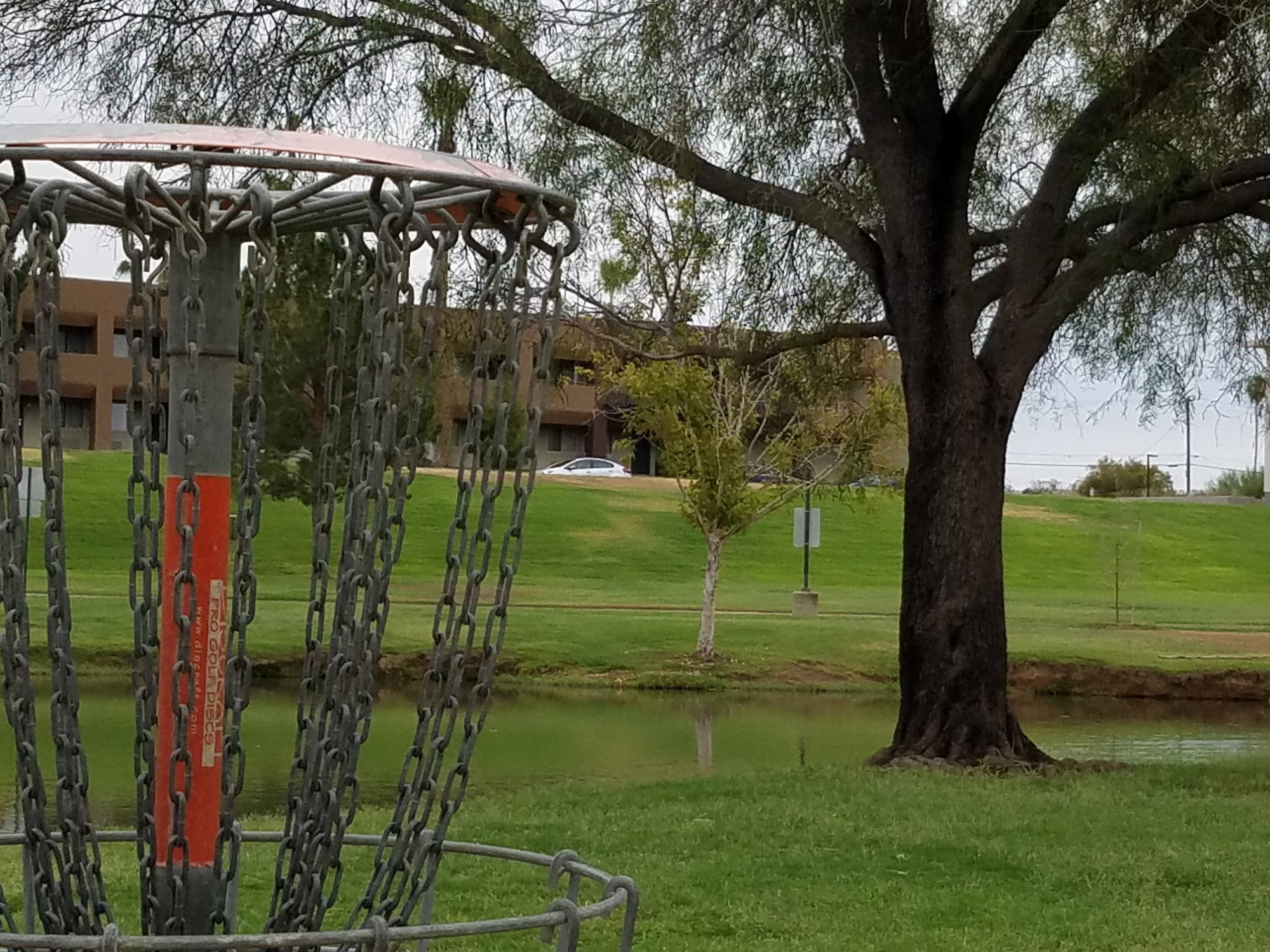Vista del Camino Park in Scottsdale.  Home of the Shelly Sharpe Disc Golf course.