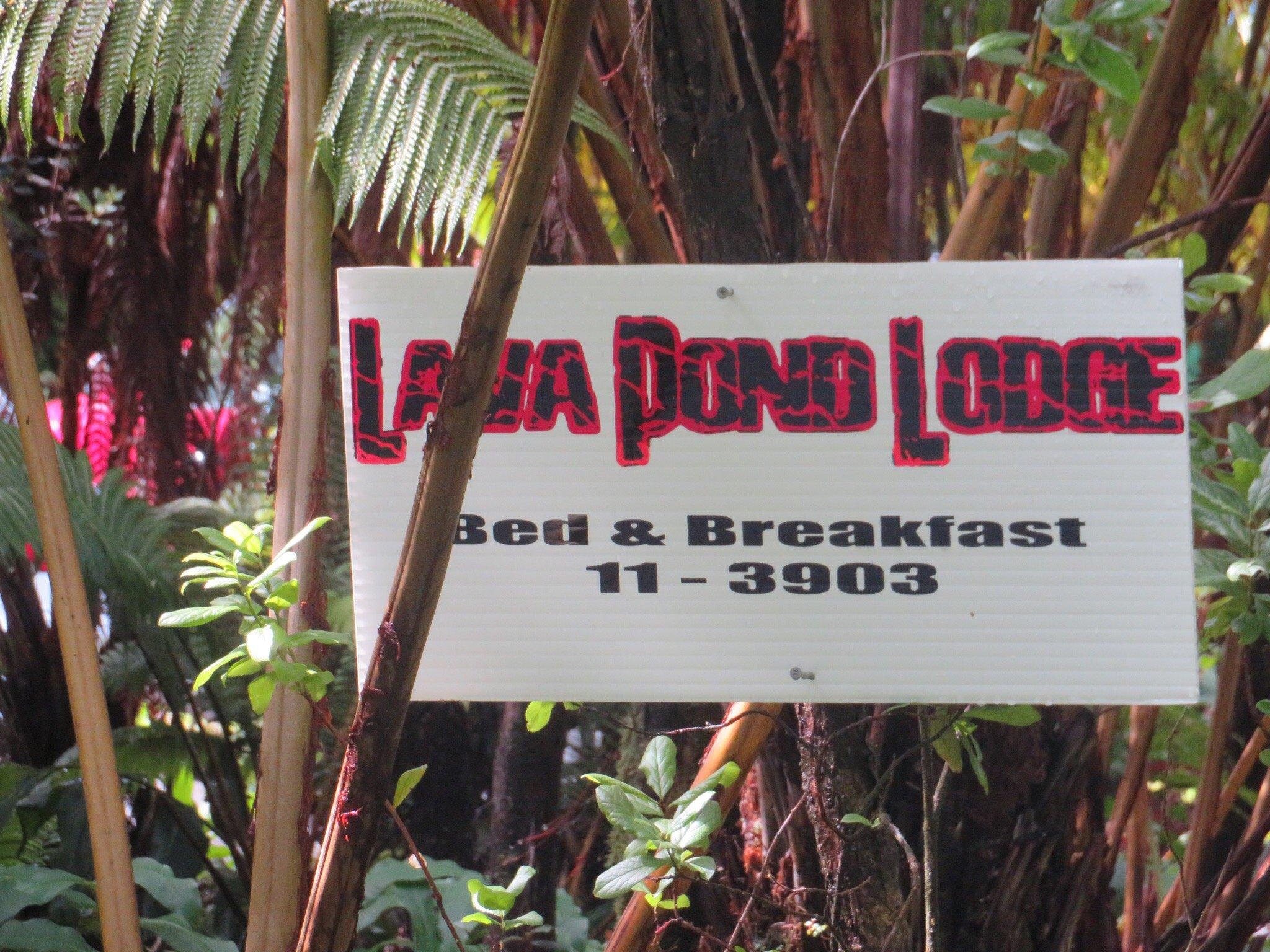 Lava Pond Lodge