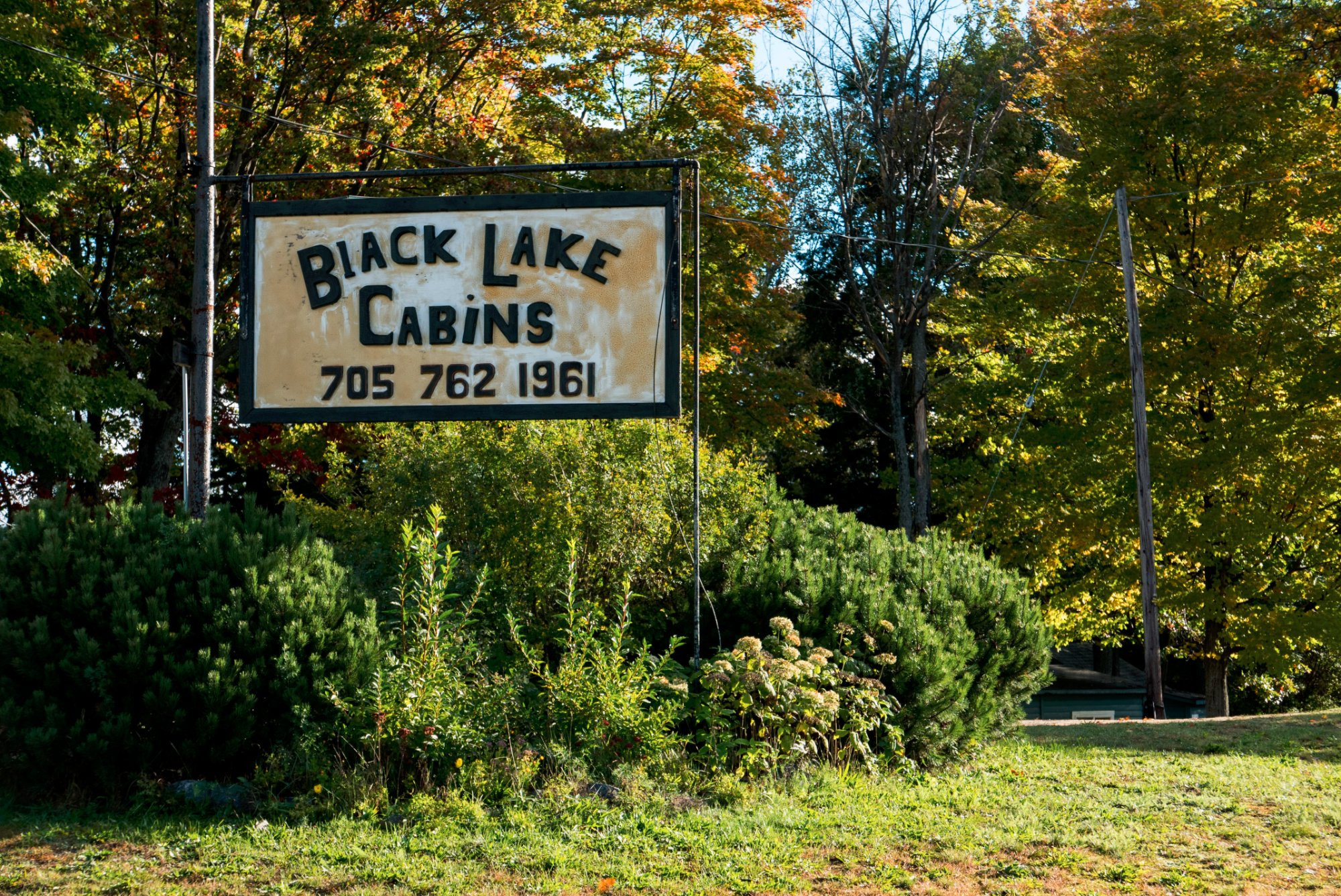 Black Lake Cabins