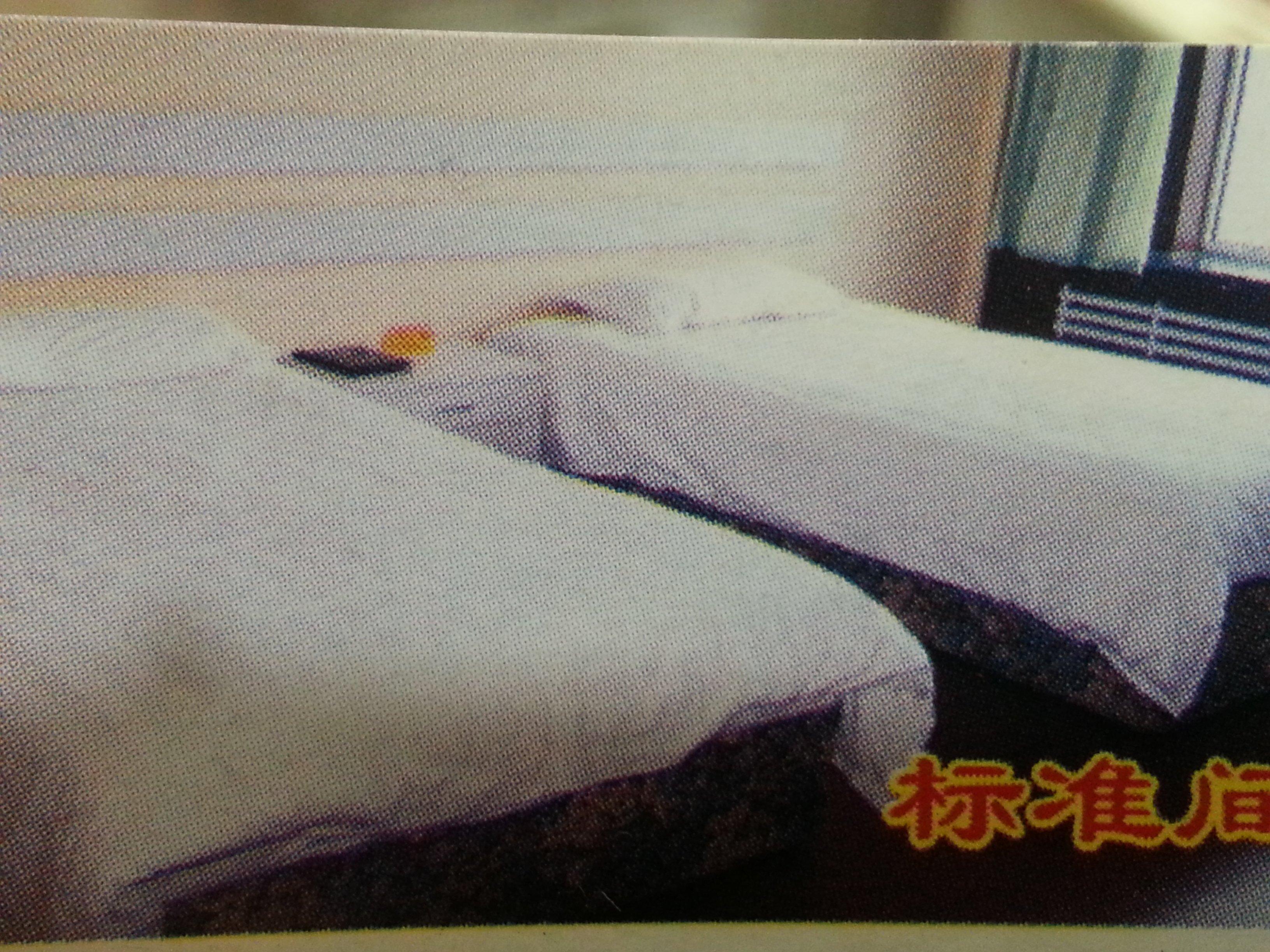 Shuangzi Cheng Hotel
