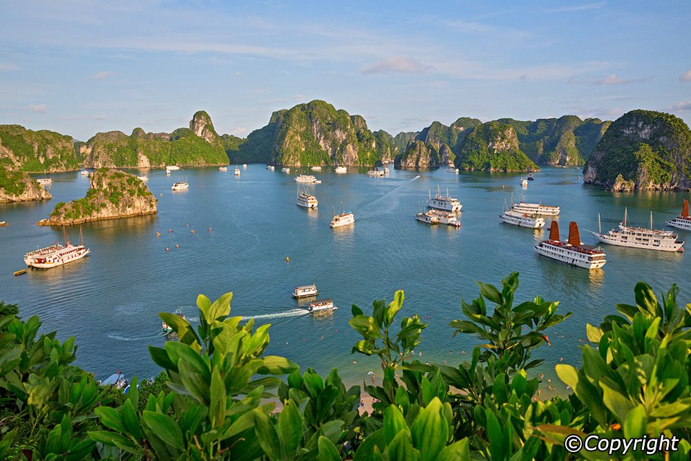 Halong Bay Vietnam Day Tours Top Tips Before You Go