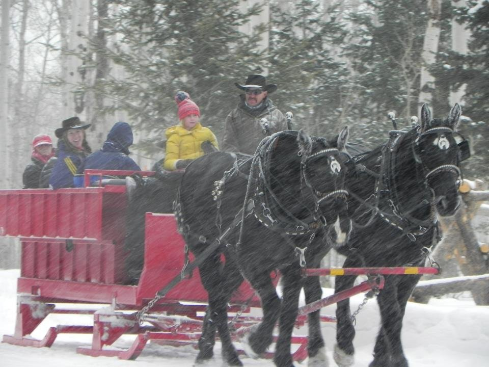 The top 10 things to do near park city utah summer attractions park city sleigh rides sciox Gallery