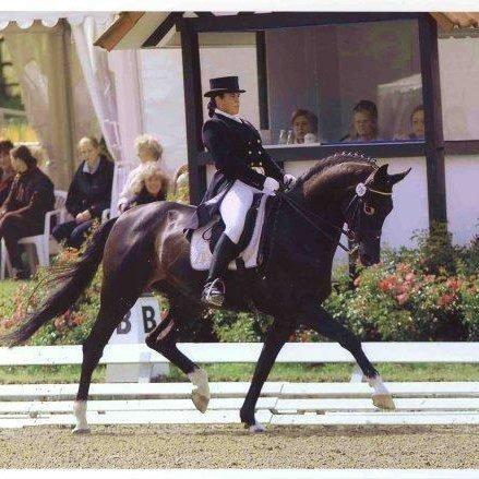 Cleland Equestrian Club