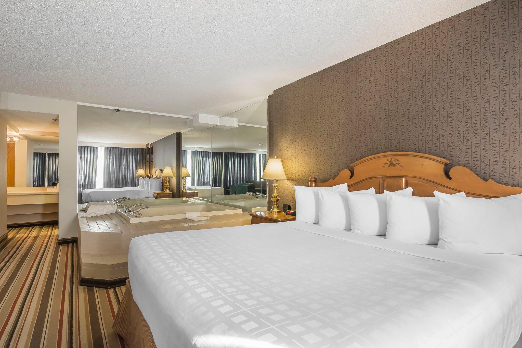 卡爾加里機場拉迪森飯店