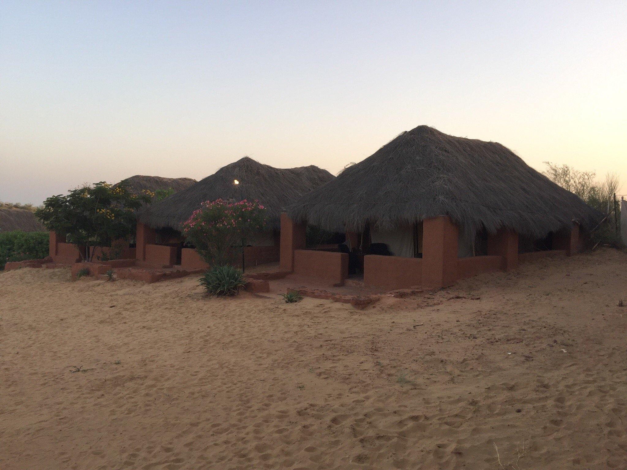 Reggie's Camel Camp
