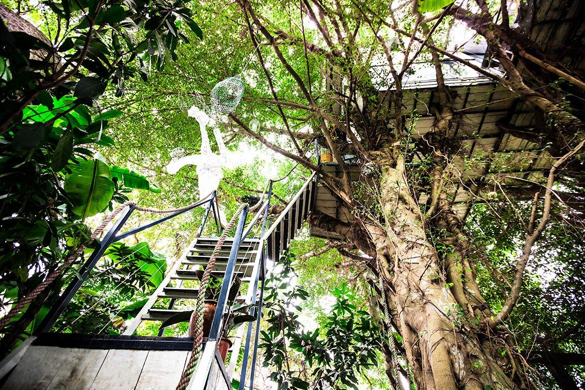 Amazing Vietnam Treehouse Part - 9: All Photos (97)