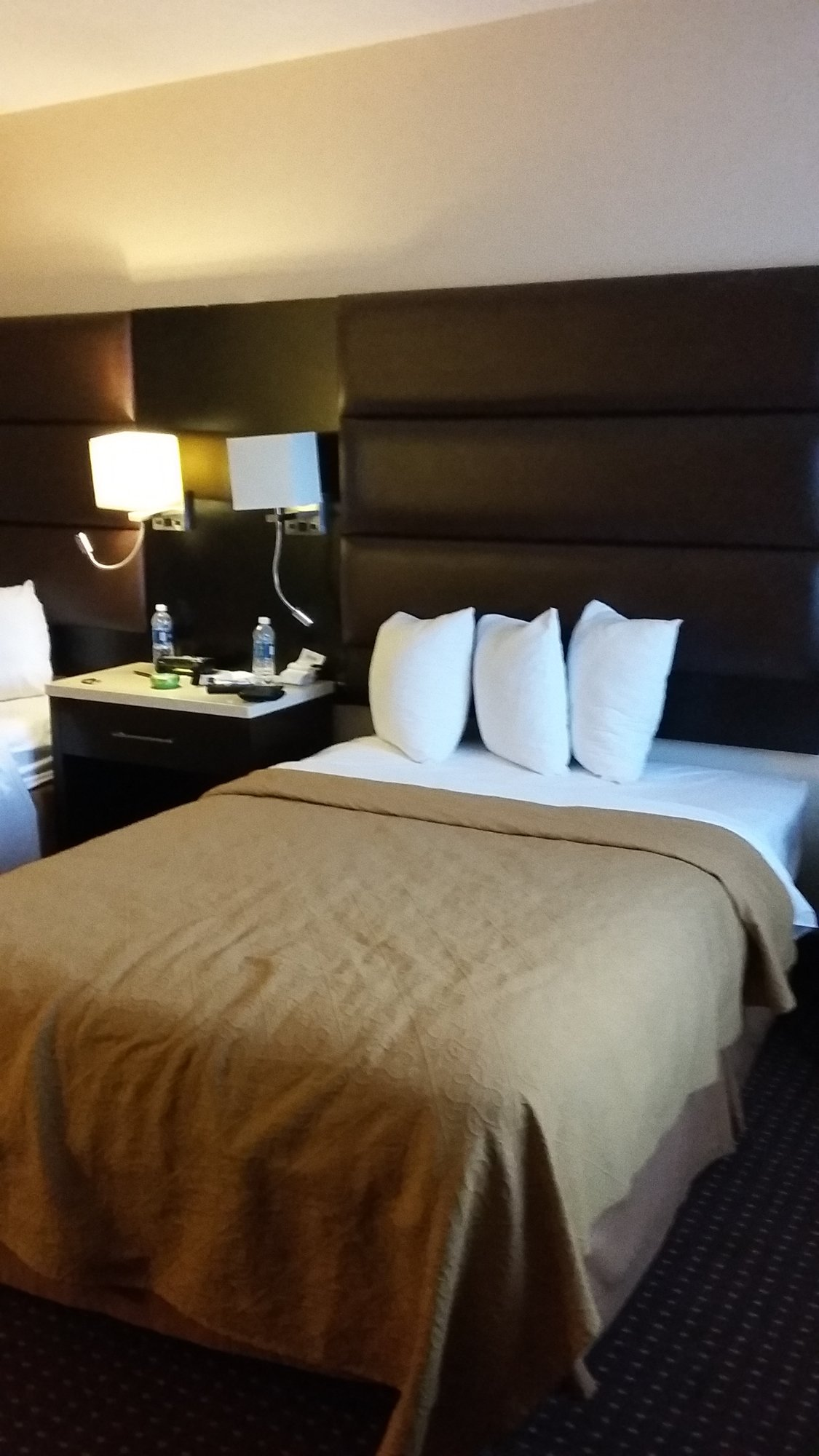 quality inn suites updated 2017 prices hotel reviews