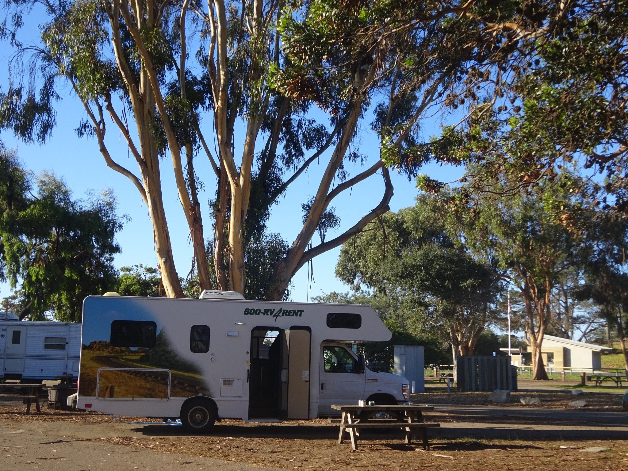 Pismo State Beach Oceano Campground