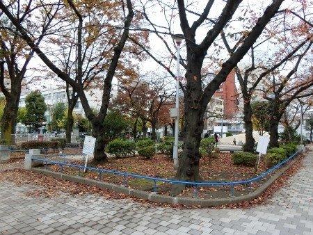 Ryogoku Park