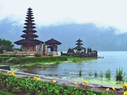 Bali Belly Tours