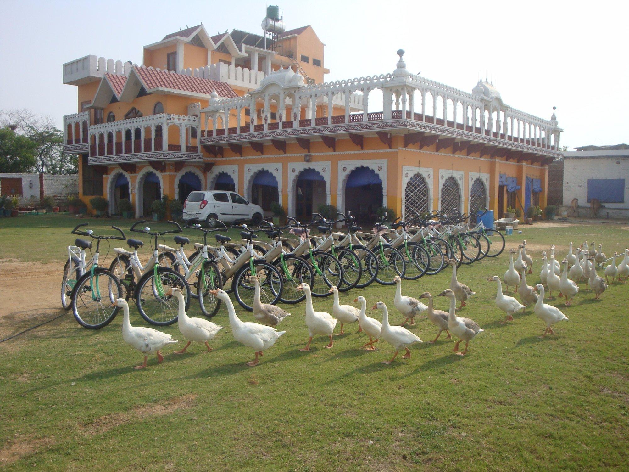 Banni Khera Farm