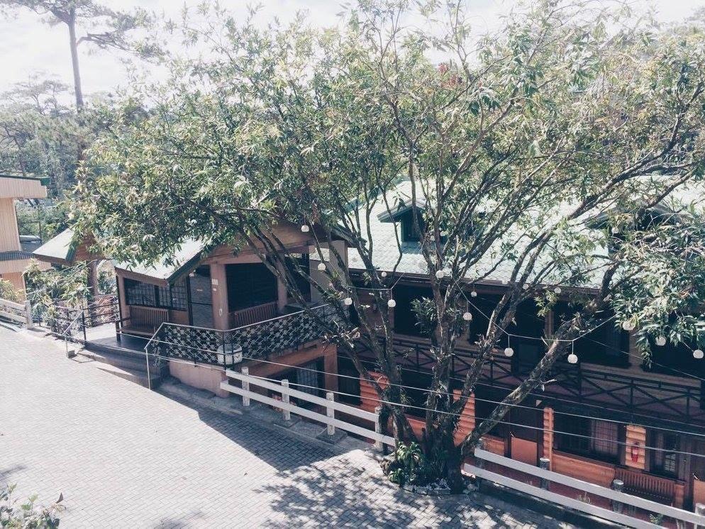 Casa Isabelina