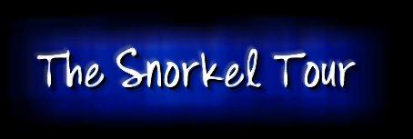 The Snorkel Tour