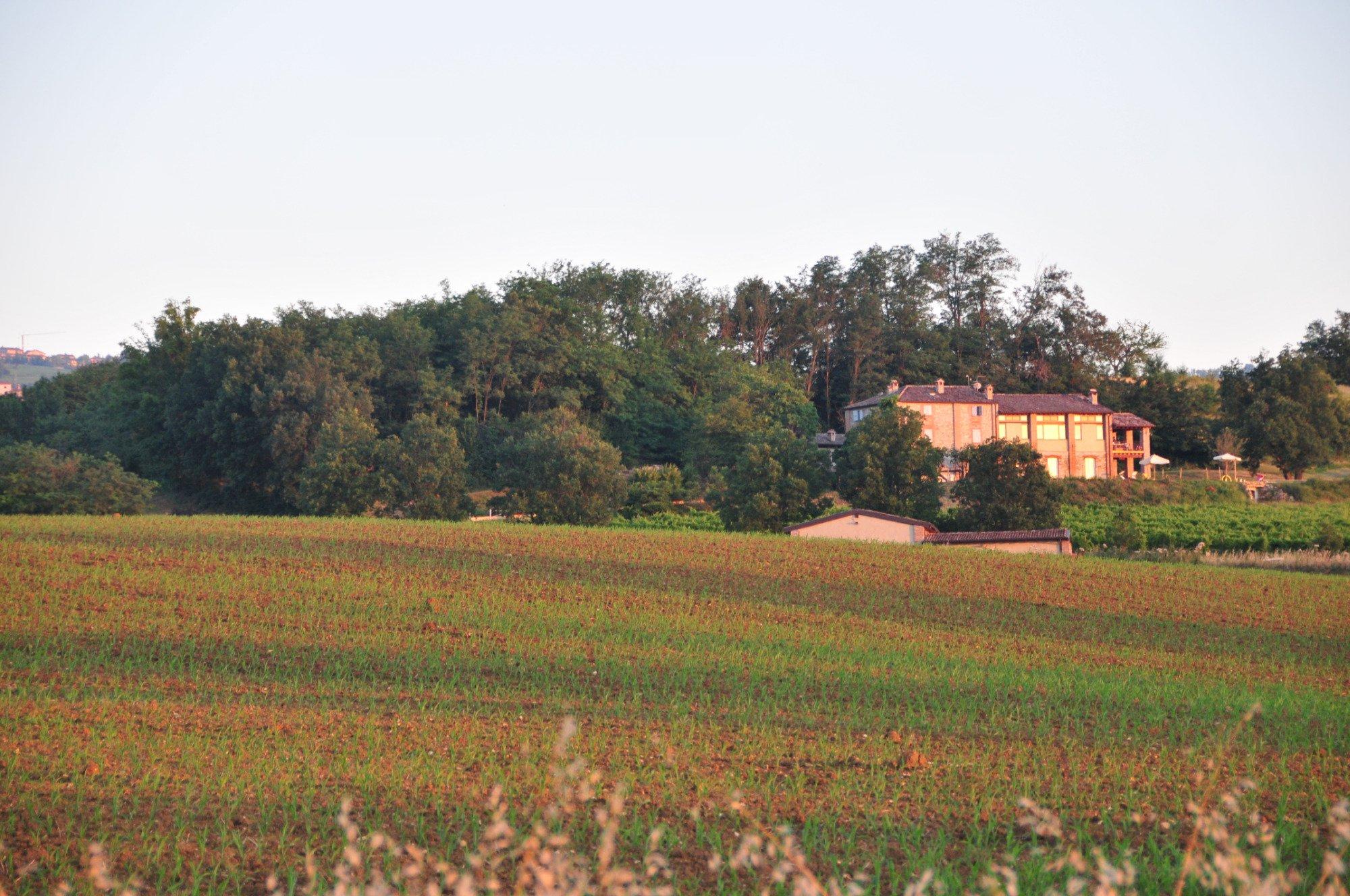 Bosco dei Poveri