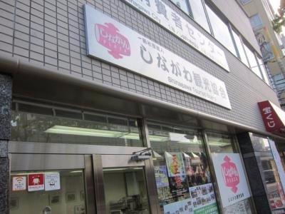 Shinakan Plaza