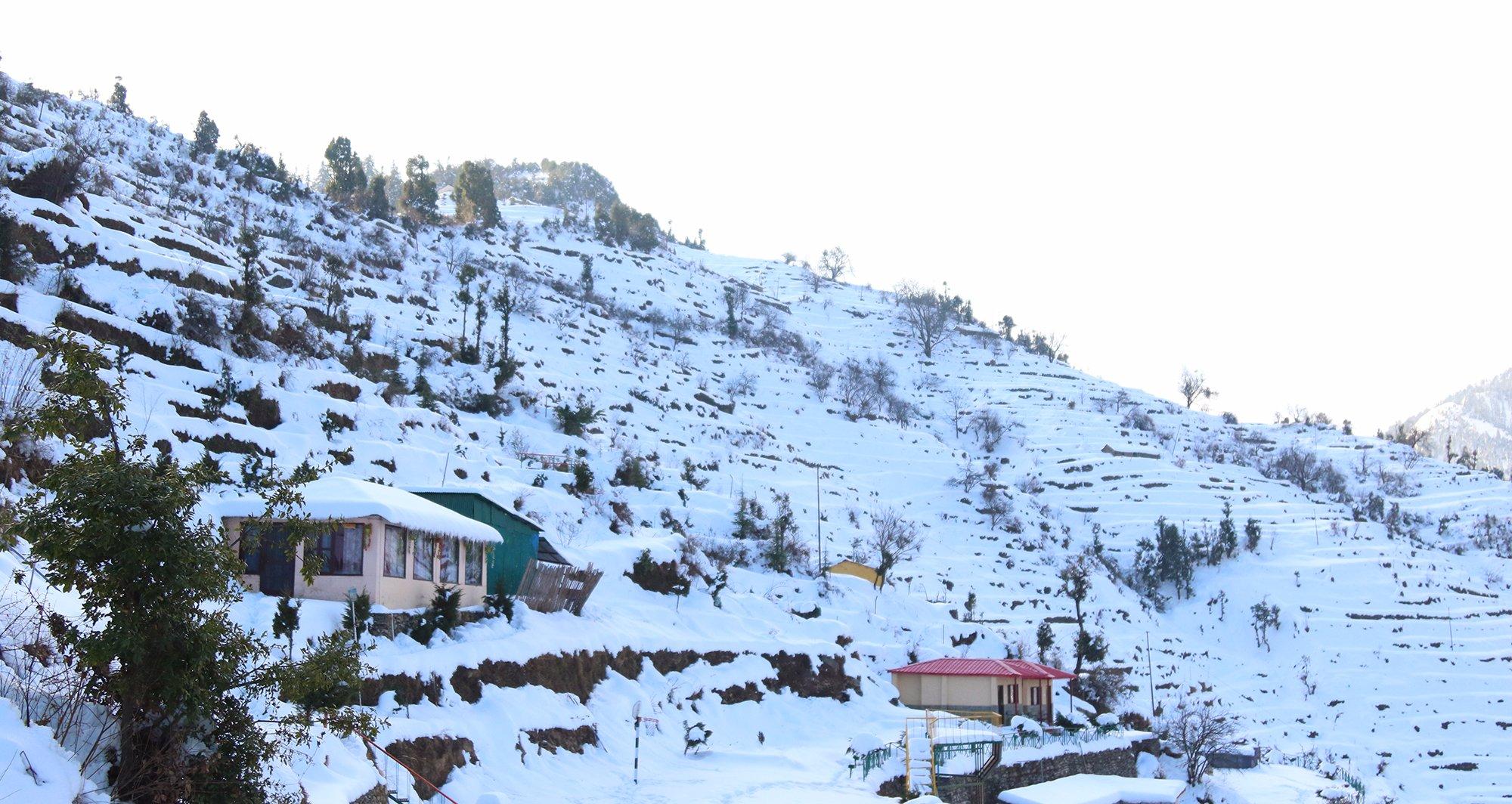 Whispering Pines Himalayan Retreat