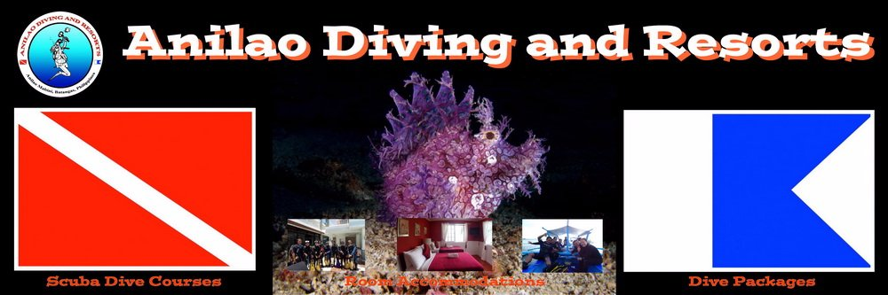 Anilao Diving and Resorts