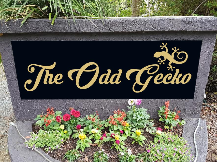 The Odd Gecko