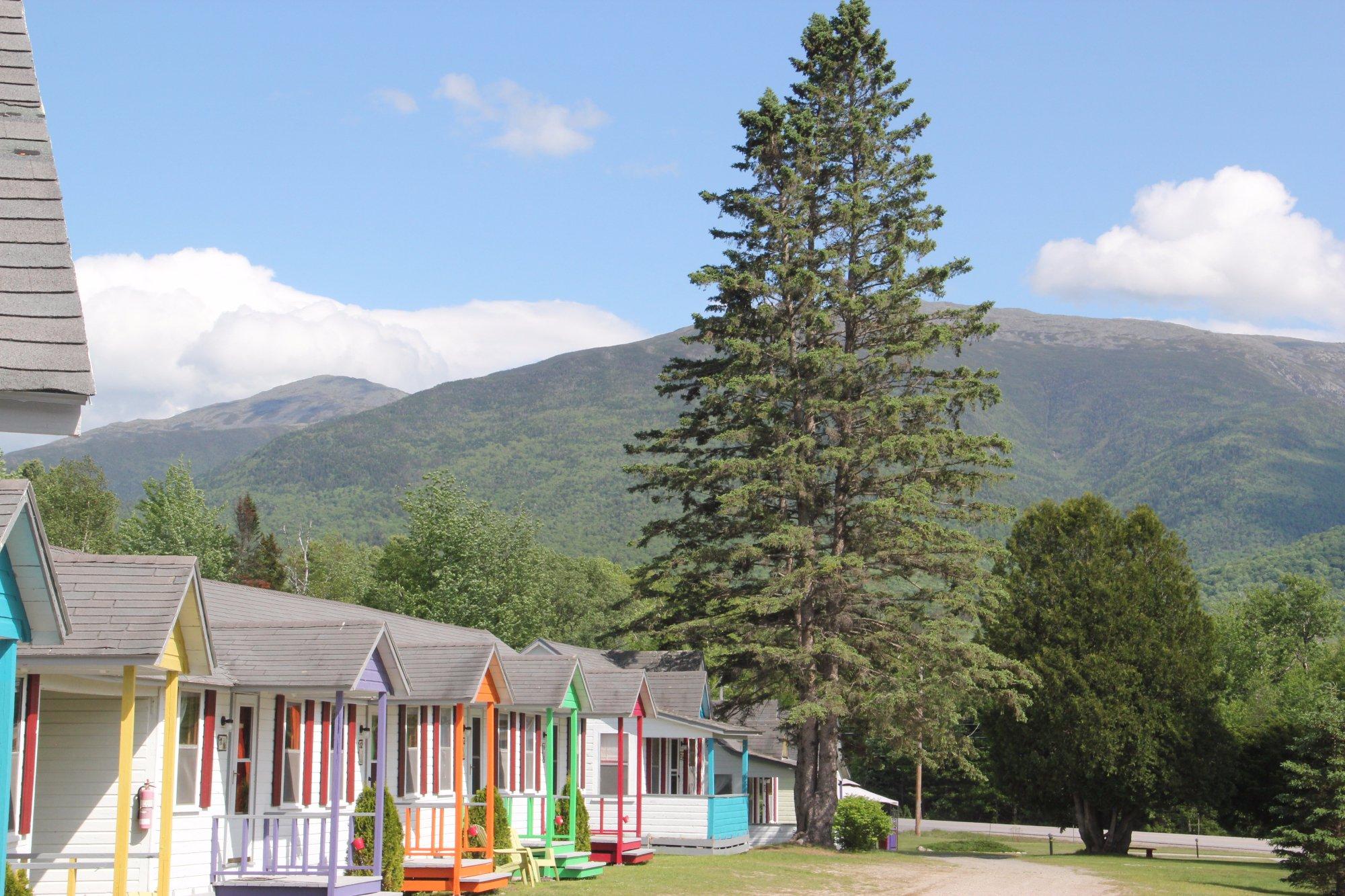 Mount Jefferson View