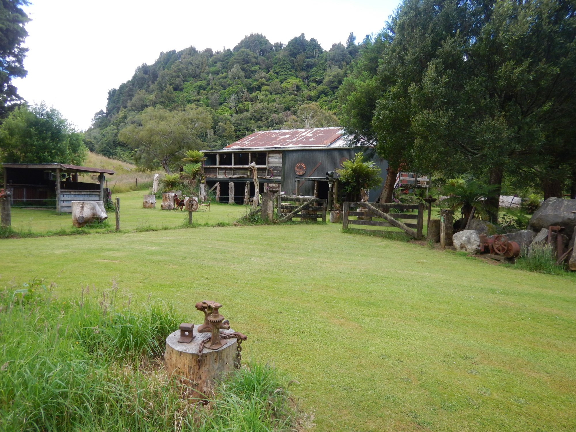 Black Fern Lodge