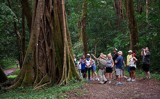 Costa Rica Best of the Best Tours