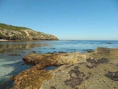 Discovery Bay Coastal Park