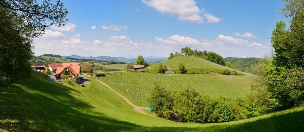 Weingut & Buschenschank Pölzl