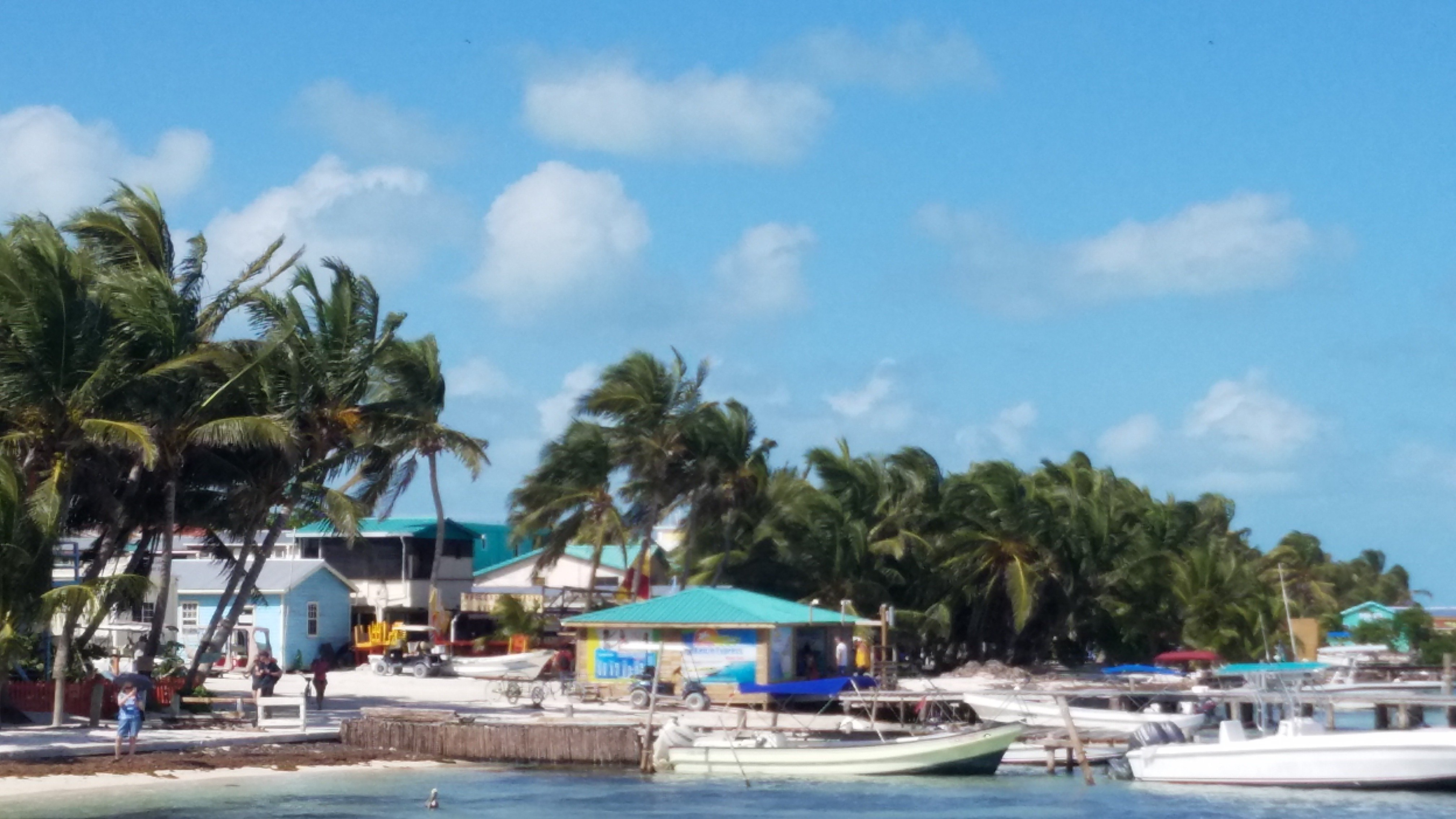 Had an awesome time with Javier & Patrick on Coralbreeze tours- snorkeling, fresh lobster- local