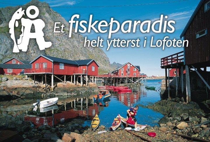 A Rorbuer - Taste of Lofoten