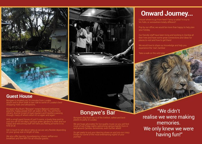Bongwe's Big Bush