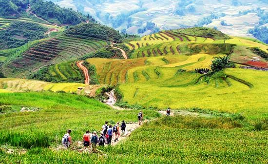 Enjoy Sapa Tours