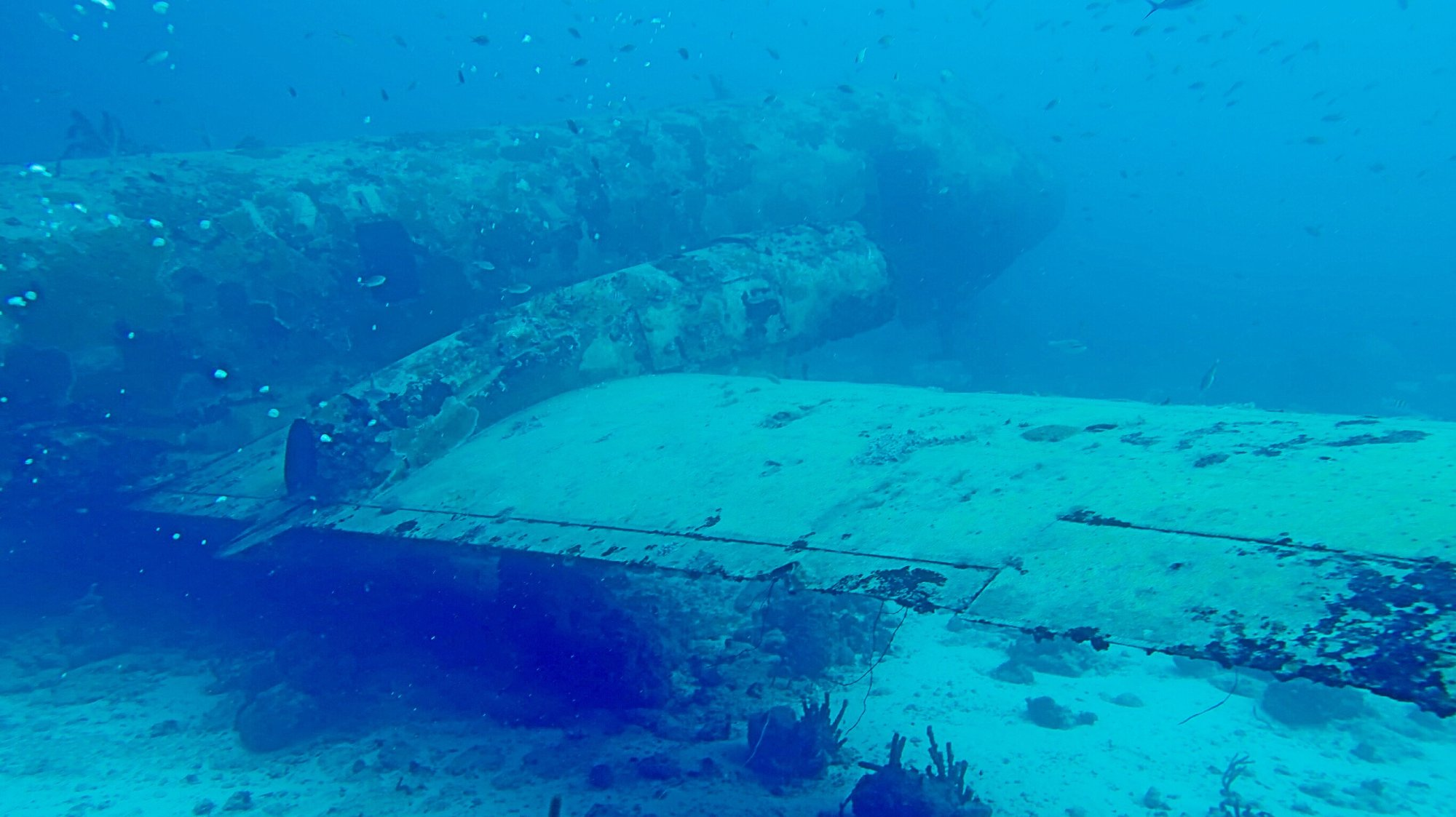 The airport dive site