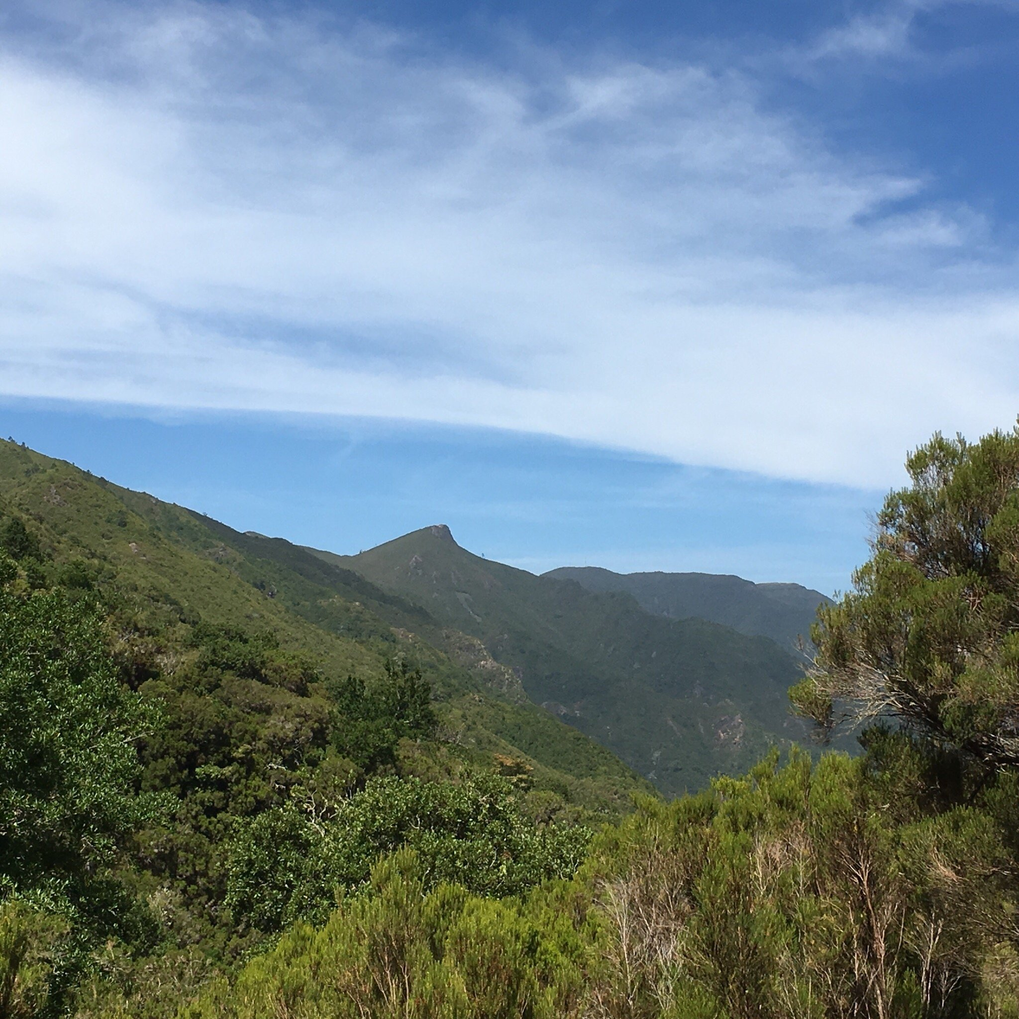 Madeira Explorers - Levada and Leisure Walks